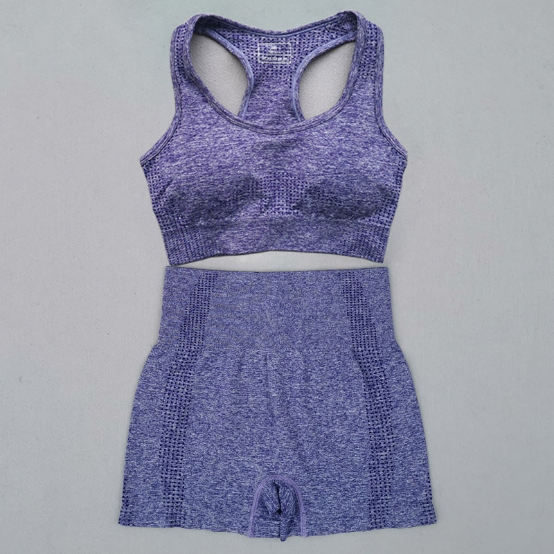 New-Summer-Seamless-Yoga-Sports-Suits-Women-Workout-Clothes-Sport-Bra-High-Waist-Fitness-Shorts-2 (1)