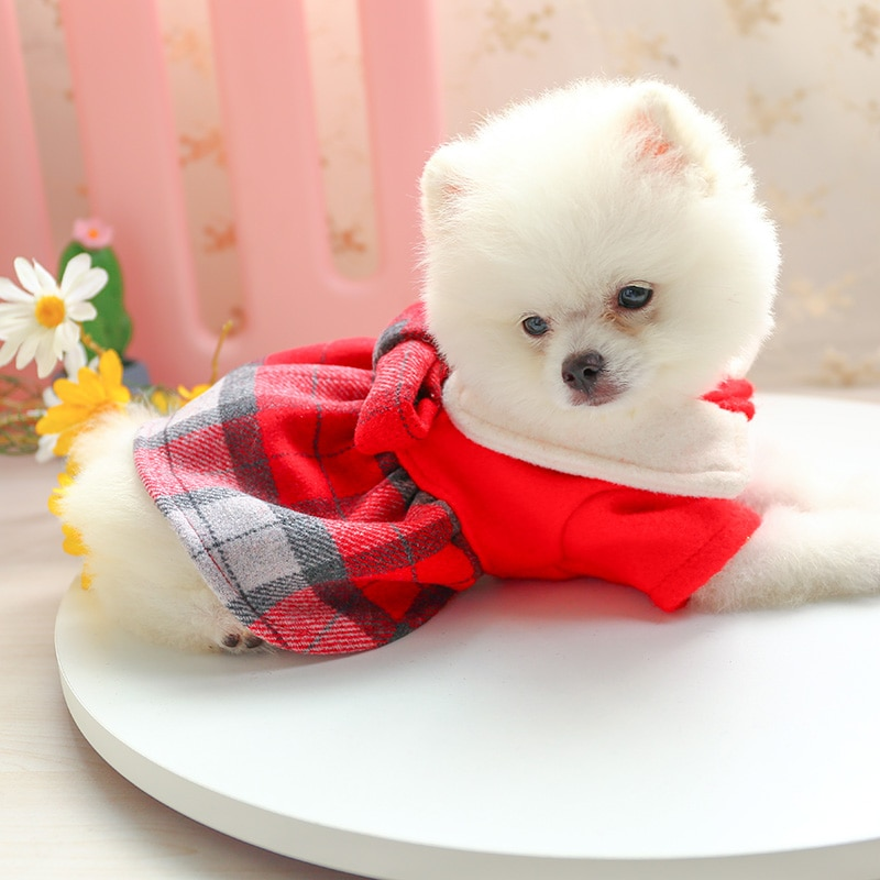 娃娃领呢子裙_7729