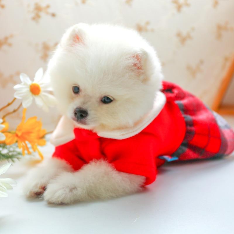娃娃领呢子裙_7726