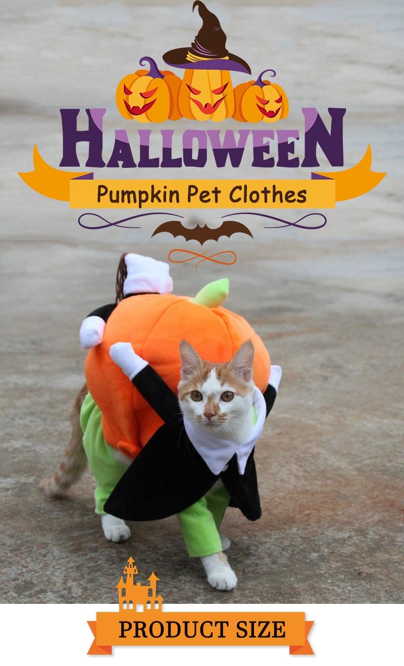 Halloween Funny Pet Cat Pumpkin Costume