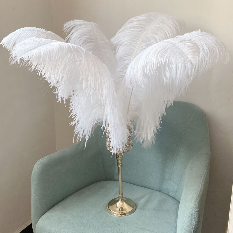 JAROWN Natural Feathers Ostrich Plumes Wedding Party DIY Decoration Feathers Home Crafts Lighting Decorations Carnival Party Halloween Decor (24)