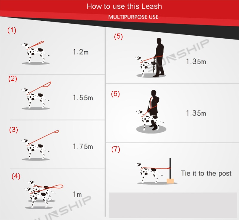 PP-019L how to use
